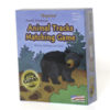 North American Animal Tracks Matching Game