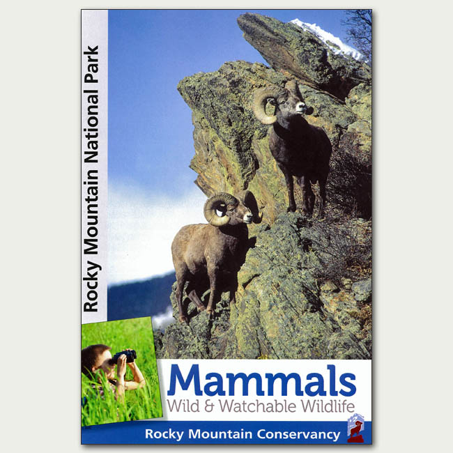 Mammals Wild & Watchable Wildlife