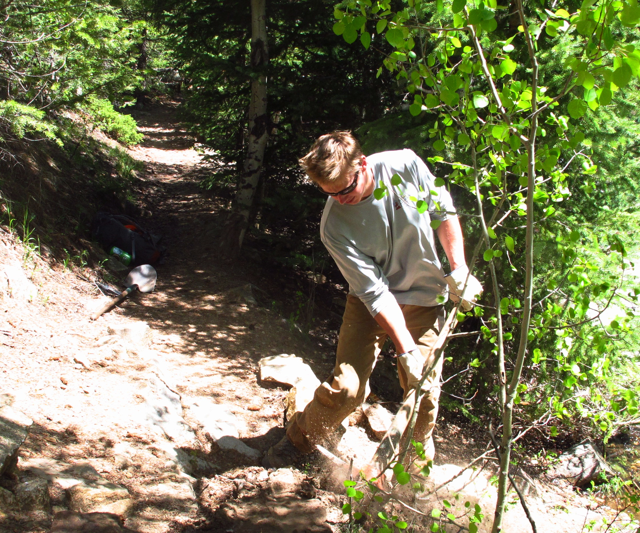 Jake clearing brush to build a rock wall.