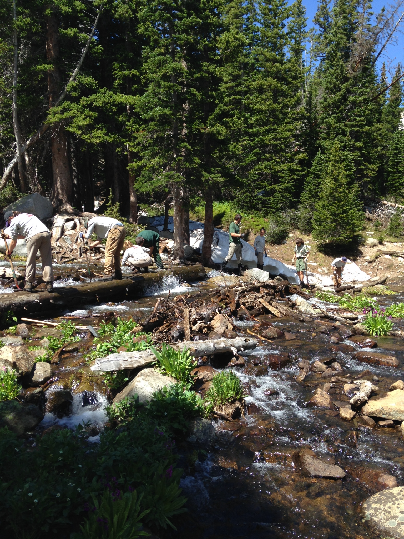 Stream Crossing Mitchell Lake Trail