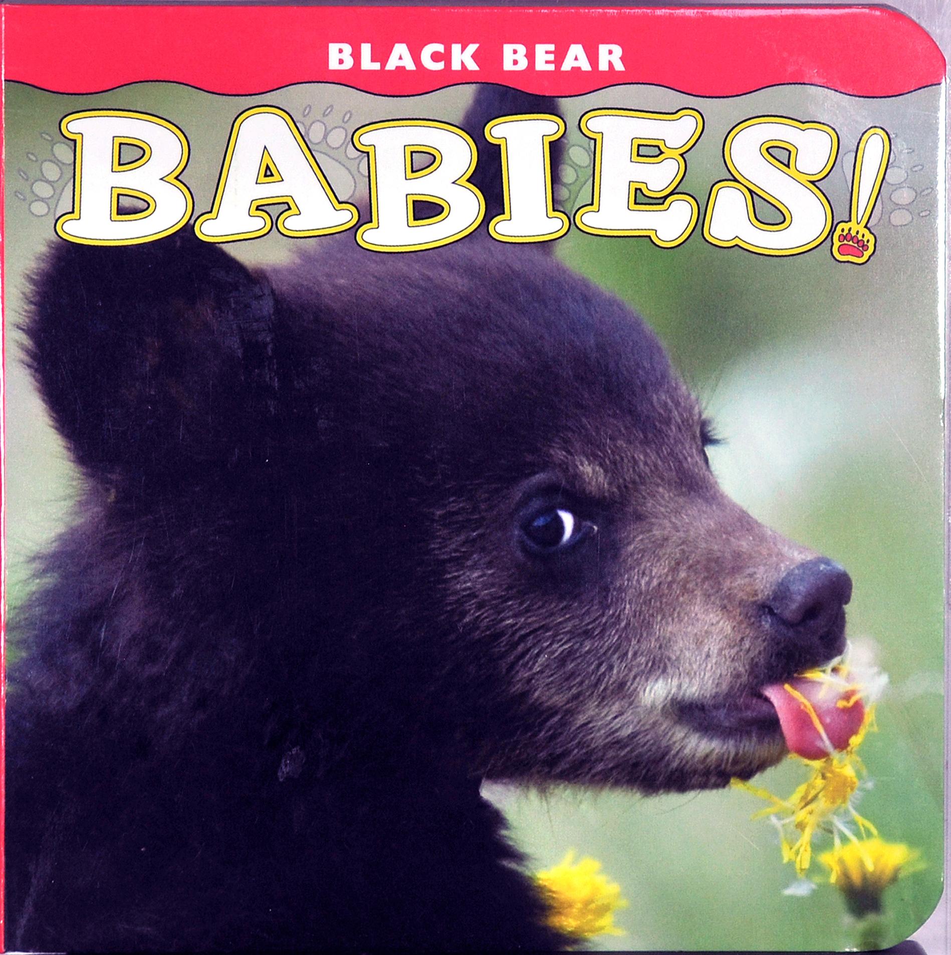 BearBabies copy
