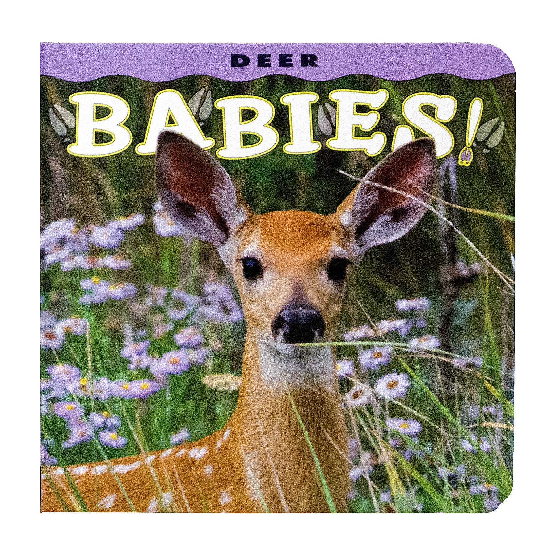 Babies Deer